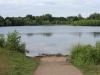 weed-free-lake